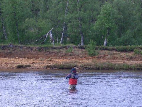 рыбалка на ручьях мурманской области